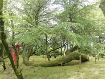 都城市4 挟野神社参道横2.jpg